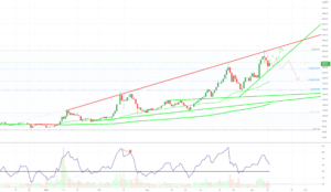 ZEC CASH DAILY - Neutral + pour BINANCE:ZECUSDT par ThePhoenix_